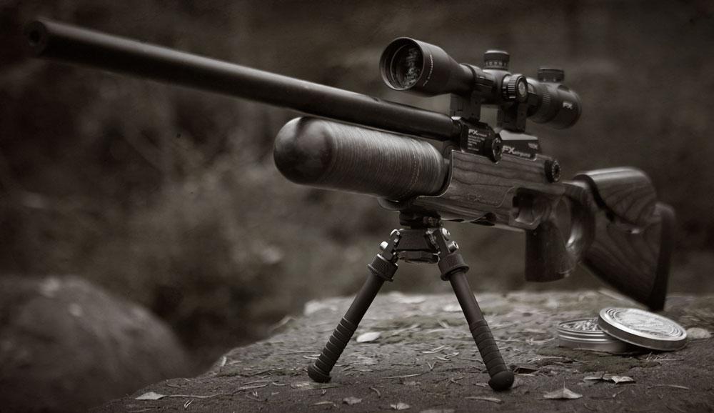 THE CROWN - FX Airguns